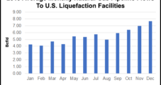 Following Record Year for LNG, More (Albeit Slower) Growth Said Ahead