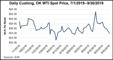 Oil Production in U.S. GOM Sets Record in 2018, EIA Says