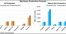 NatGas, Oil Production Out of Big Seven Plays to Increase Next Month, EIA Says
