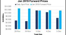 Jittery Natural Gas Forward Prices Plunge; Outlooks Indicate Warmer Temps Ahead