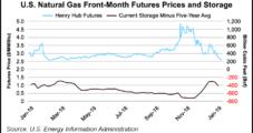 EIA Lowers '19 Henry Hub Forecast to $2.83; Polar Vortex Gas Demand Near Record