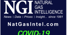 Covid-19 Mitigation Delayed Some Natural Gas Power Plant Construction, Says EIA