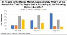 Daily Transactions Taking Bigger Share of Pie in Latest Mexico Gas Price Survey