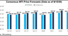 OPEC Reduces Oil Demand Forecast into 2021 from Covid-19's Lingering Impacts