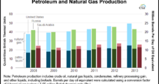 Shales Helping Make United States Largest NatGas Producer This Year